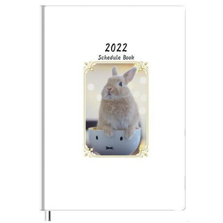 【予約販売】 うさぎ 毎日がかんぺい 2022年 B5スケジュール帳 B52233