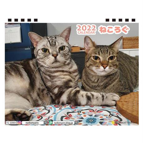 【予約販売】 アメリカンショートヘア猫 ねころぐ 2022年 卓上 カレンダー TC22156