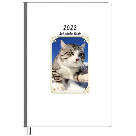 【予約販売】 旅猫 ニャン吉 2022年 A5スケジュール帳 A52252