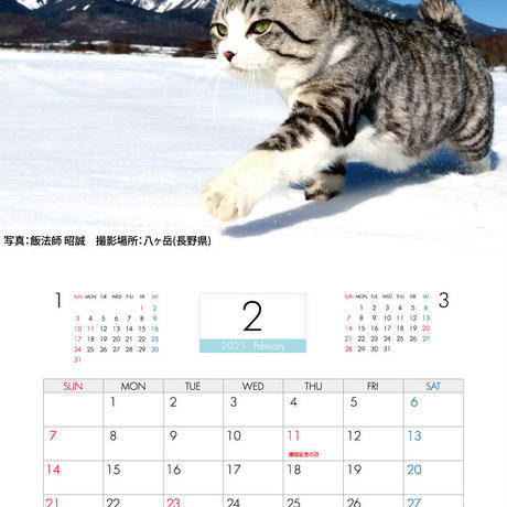 【予約販売】 旅猫 ニャン吉 2021年 壁掛けカレンダー KK21033