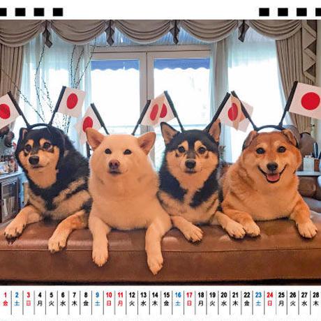 【予約販売】 柴犬 Kikko Sasha Momo&Hina 2021年 卓上カレンダー TC21090