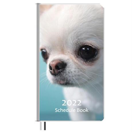【予約販売】 チワワ UniEbi 2022年 ポケットサイズ スケジュール帳 PO2206