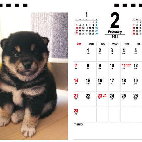 【予約販売】 黒柴一家の日常 2021年 卓上カレンダー TC21103