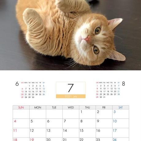 【予約販売】 短足マンチカンのプリン 2021年 壁掛けカレンダー KK21076