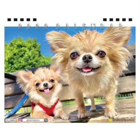 【予約販売】 チワワ POPO&POM 2022年 卓上 カレンダー TC22002