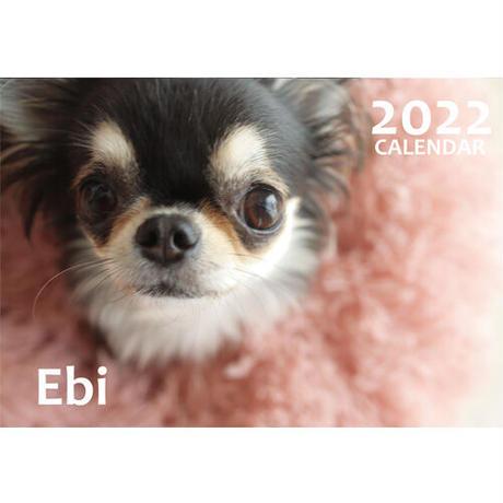 【予約販売】 チワワ Ebi 2022年 壁掛け カレンダー KK22007