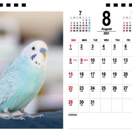 【予約販売】 セキセイインコ pokosora 2021年 卓上カレンダー TC21025