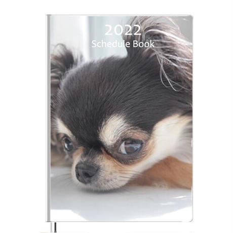 【予約販売】 チワワ UniEbi 2022年 B5スケジュール帳 B52205
