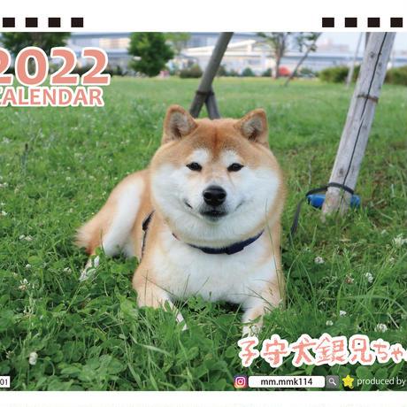 【予約販売】 柴犬 子守犬銀兄ちゃん 2022年 卓上 カレンダー TC22135