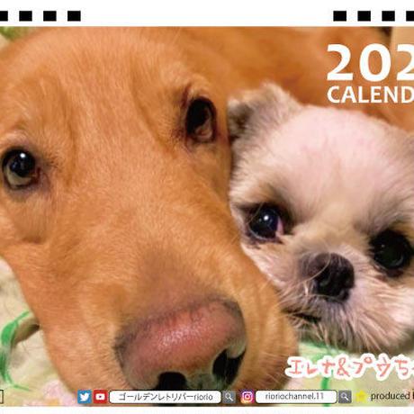 【予約販売】 ゴールデンレトリバー エレナ&プウちゃん 2021年 卓上カレンダー TC21124