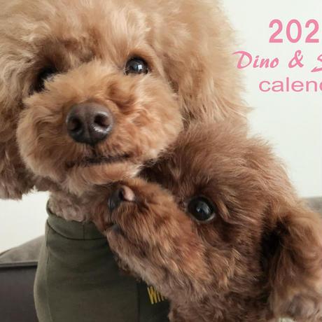 【送料無料】2020年『Dino&Sena』壁掛けカレンダー