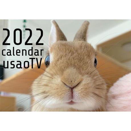 【予約販売】 うさぎ うちのウサ 2022年 壁掛け カレンダー KK22124