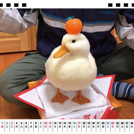 【予約販売】 アヒル Ryuzo Arts 2021年 卓上カレンダー TC21119