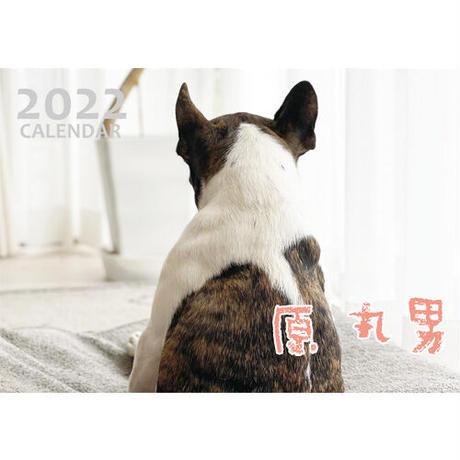 【予約販売】 フレンチブルドッグ 原 丸男 2022年 壁掛け カレンダー KK22154