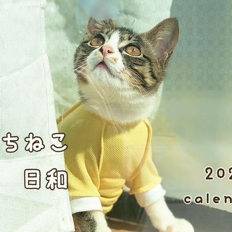 【送料無料】2020年『うちねこ日和』壁掛けカレンダー