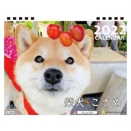 【予約販売】 柴犬 こさめ 2022年 卓上 カレンダー TC22015