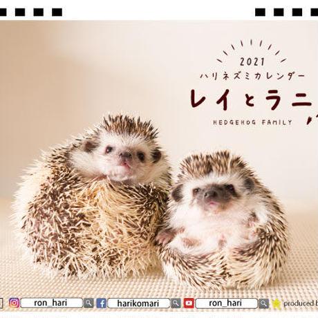 【予約販売】 ハリネズミ レイとラニ 2021年 卓上カレンダー TC21115