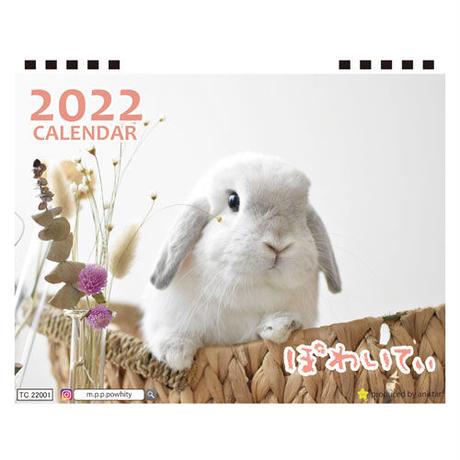 【予約販売】 うさぎのぽわいてぃ 2022年 卓上 カレンダー TC22114
