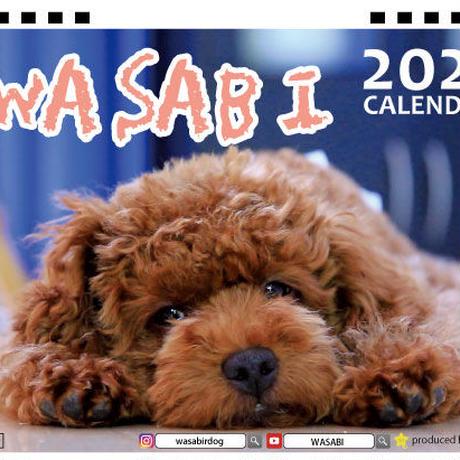 【予約販売】 トイプードル wasabi 2021年 卓上カレンダー TC21087
