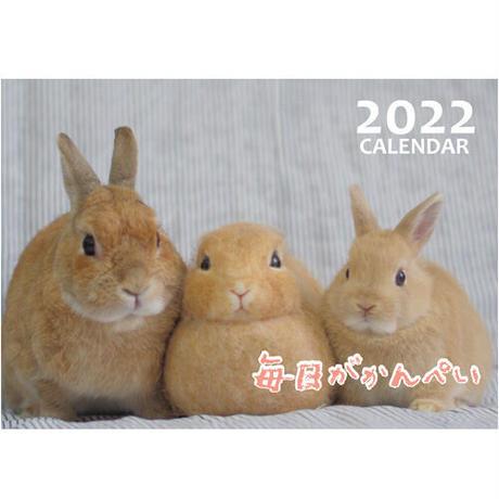 【予約販売】 うさぎの毎日がかんぺい 2022年 壁掛け カレンダー KK22073
