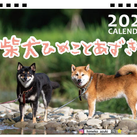 【予約販売】 柴犬 ひめことあずき 2021年 卓上カレンダー TC21111