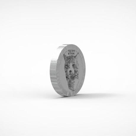 【予約販売】 旅猫 ニャン吉 2022年 イヤーコイン Year Coin  YC2202