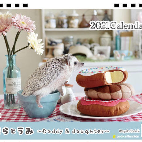 【予約販売】 ハリネズミ そらとうみ 2021年 卓上カレンダー TC21109