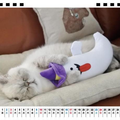 【予約販売】 猫のniko&poko 2021年 卓上カレンダー TC21006