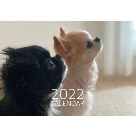 【予約販売】 チワワ TORO&UNI 2022年 壁掛け カレンダー KK22003