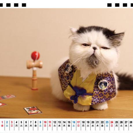 【予約販売】 猫のbocco&zuu 2021年 卓上カレンダー TC21118