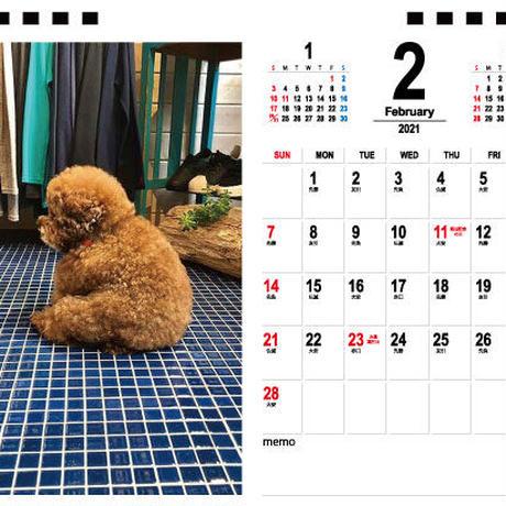 【予約販売】 トイプードル こころの毎日 2021年 卓上カレンダー TC21106