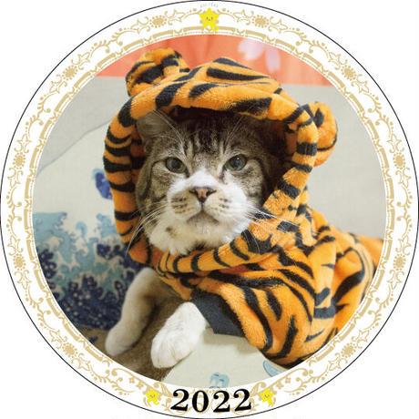【予約販売】 猫のリキちゃんねる 2022年 イヤープレート皿立て付き PU2209