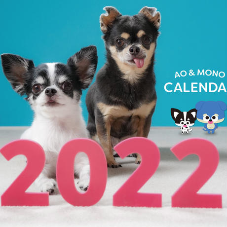 【予約販売】 チワワのAO&MONO 2022年 壁掛け カレンダー KK22109