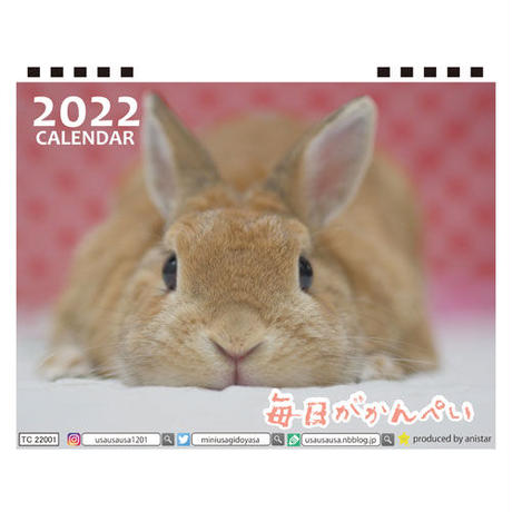 【予約販売】 うさぎの毎日がかんぺい 2022年 卓上 カレンダー TC22074