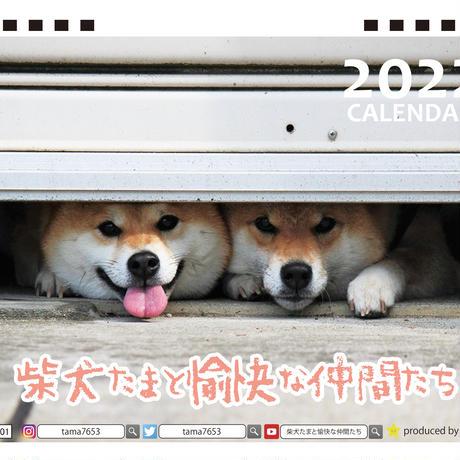 【予約販売】 柴犬 たまと愉快な仲間たち 2022年 卓上 カレンダー TC22070