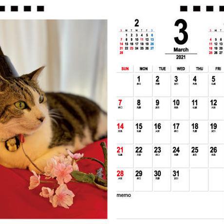 【予約販売】 猫とお酒と日々のこと 2021年 卓上カレンダー TC21069