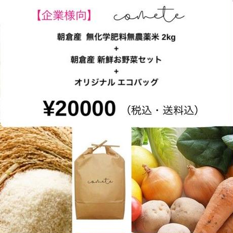 【企業様向】2㎏セット(お野菜セット)☆予約販売☆