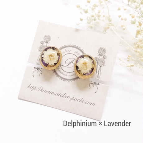 Herbarium Earrings - Oval no.2-