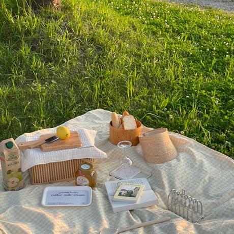 picnic sheet gingham check yellow