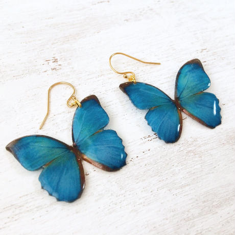 Exotic Blue Butterfly Earrings [Pierced or Clip-on]