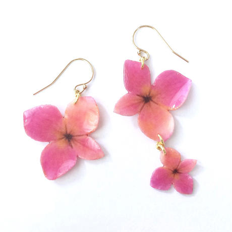 Pink-Orange Hydrangea Earrings / Asymmetric [Pierced or Clip on]
