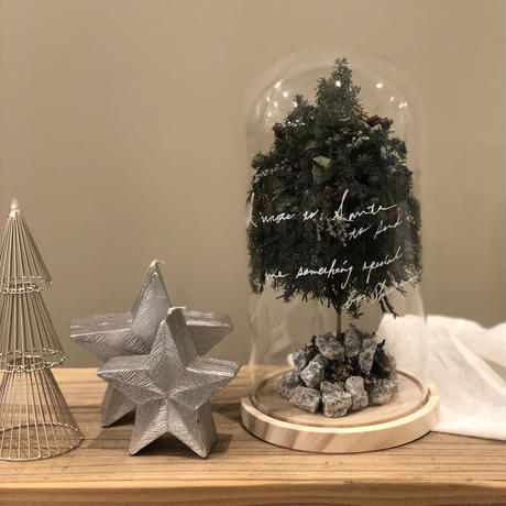 Christmas Glas Dome  -i wrote to santa-