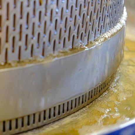 蜂酵母のシードル(アシナガバチ)(750ml)