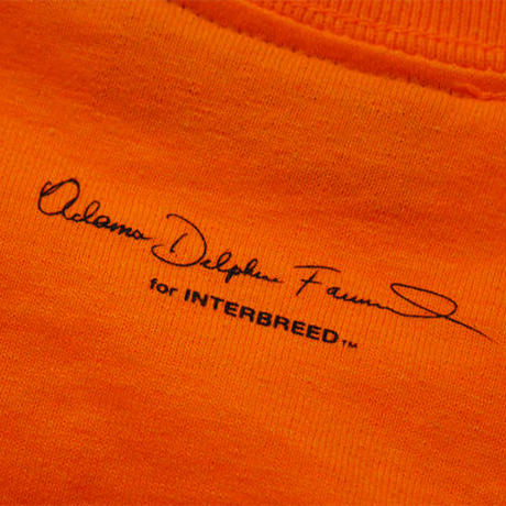 INTERBREED L.BOOGIE COLLECTION L.BOOGIE TEE (ORANGE, WHITE)
