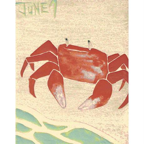 【日本画】6/1 Crabカニ『366DAYS』