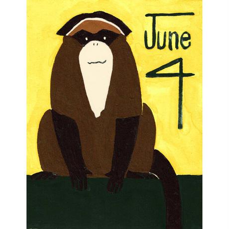 【日本画】6/4 Brazza's guenonブラッザグエノン『366DAYS』