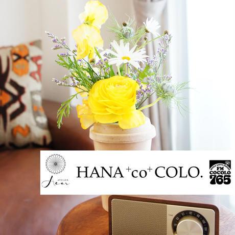 atelier Acor×FMCOCOLO 花の定期便【HANA+co+COLO.】《土曜日便》