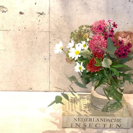 Acorの花の定期便◆◆日曜日便◆◆