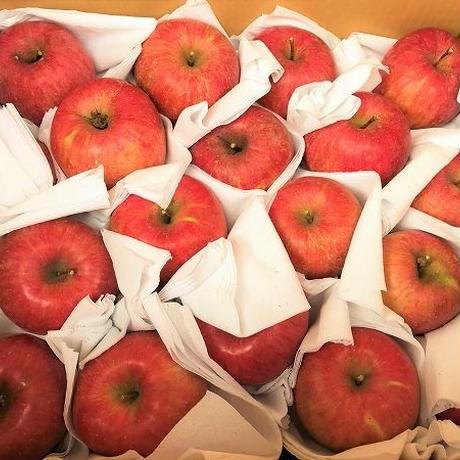 自然農法 町田農園 季節のりんご 10キロ箱入り(箱代込み)