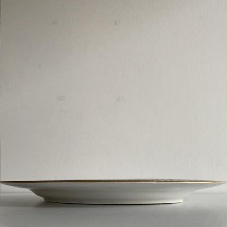 Oval plate( C )